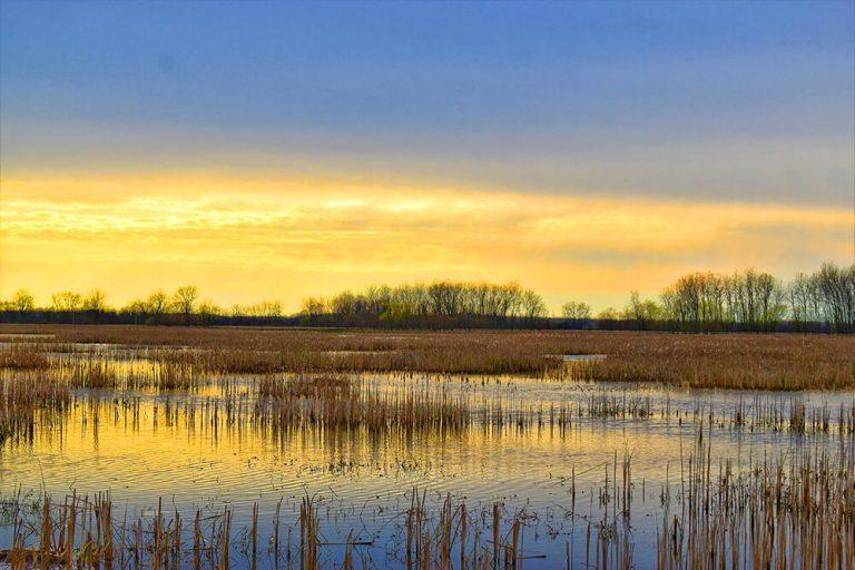 Killdeer Plains Wildlife Area