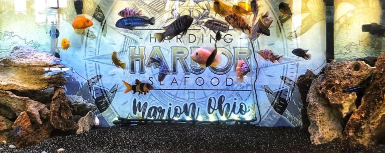 Harding Harbor Seafood Restaurant